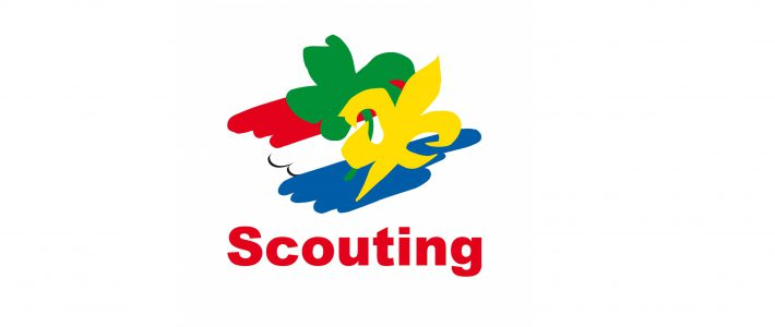 Scout-In 2019